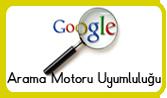 Google Uyumluluk